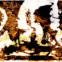 Elke Erb: Poesiealbum 301