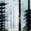 Hilde Domin: Poesiealbum 309